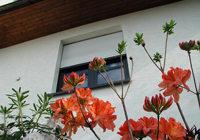 Außenfensterrollos